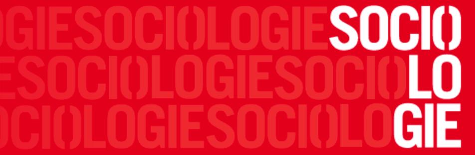 « Une  théorie sociale est-elle encore possible ? »